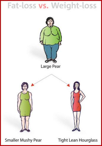fat loss vs weight tloss